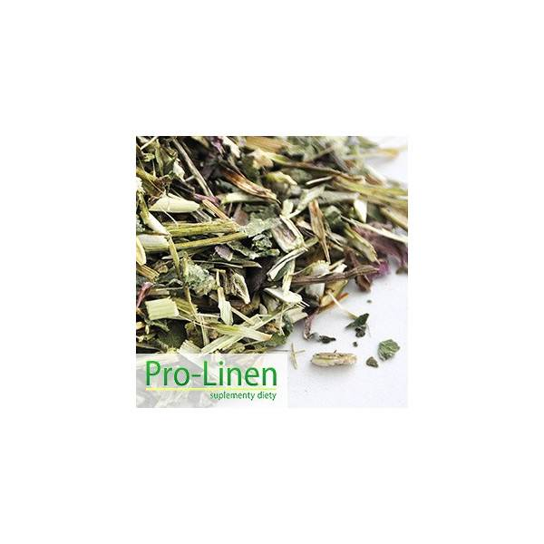 PRO-LINEN Echinacea na odporność 500 g