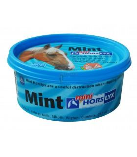 lizawka horslyx mint