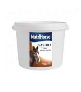 NUTRI HORSE Gastro 2,5 kg