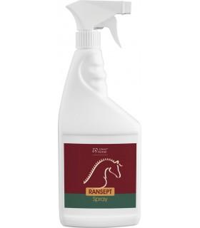 Over Horse RANSEPT Spray