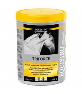 EQUISTRO Triforce 600 g