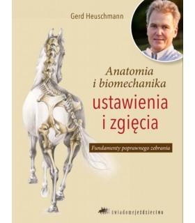 Anatomia i biomechanika ustawienia i zgięcia